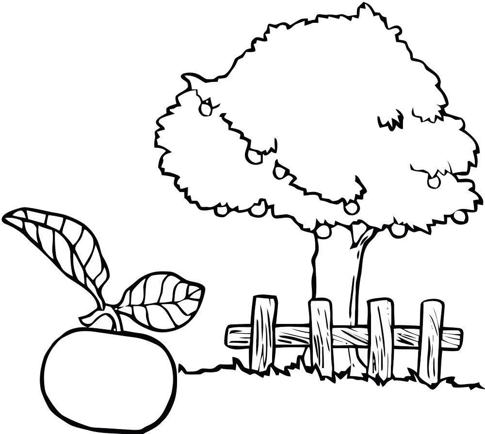 Картинка раскраска яблоко » Скачать лучшие картинки ...