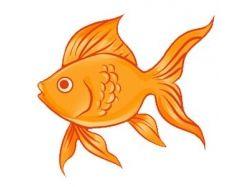 Картинки из сказки золотая рыбка