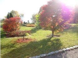Картины о осени 4