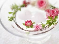 Картинки раскраски цветы в вазе 4