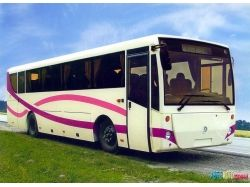 Автобус баз фото 2