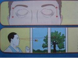 Упражнения для глаз в картинках для детей 1