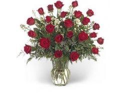 Роза цветы 6