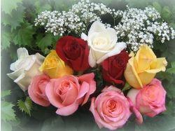 Красивые букеты цветов в картинках 3