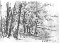 Рисунки деревни 8
