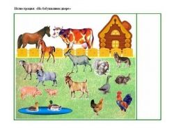 Предметные картинки домашние животные 5