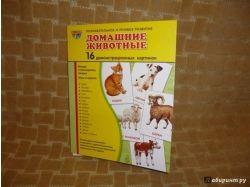 Предметные картинки домашние животные 6