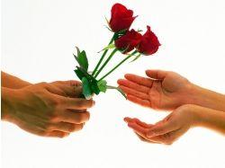 Цветы для любимой 2