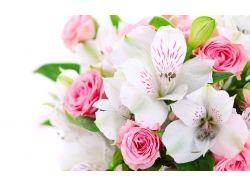 Цветы для любимой 3
