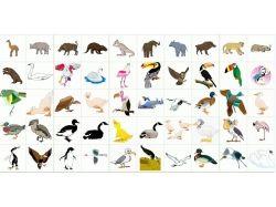 Картинки тату животных 4