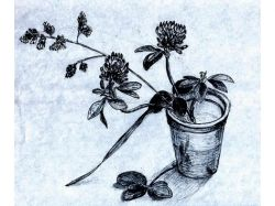 Крынка рисунок 2