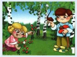 Картинки правила поведения в лесу