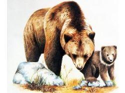 Картинки диких животных с детенышами 5