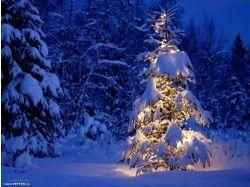 Картинки зимы на телефон 7
