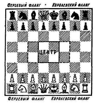 Расположение шахматов картинка