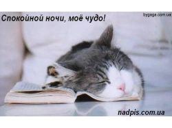 Спокойной ночи картинки парню 7