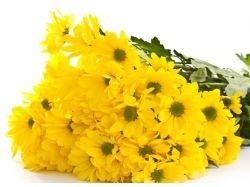 Фото больших букетов цветов 5