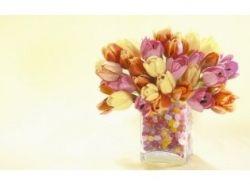 Картинки ваза и цветы 1