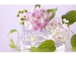 Картинки ваза и цветы 8