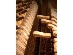 Фотографии фортепиано 1