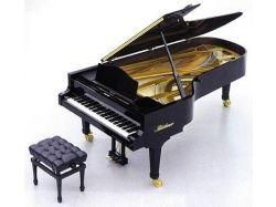 Фотографии фортепиано 5