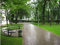 Парк картинки 1