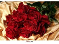Картинки букет красных роз 3