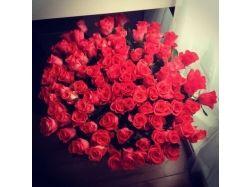 Картинки букет красных роз 5