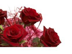 Картинки букет красных роз 7
