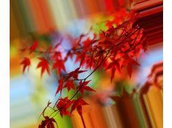 Картинки природы осени 1