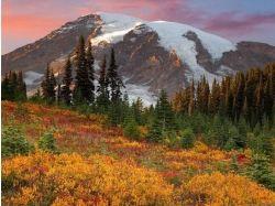 Картинки природы осени 5
