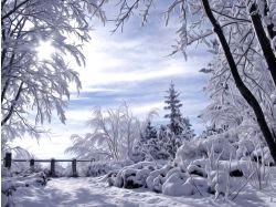 Картинки зимы для рабочего стола 4