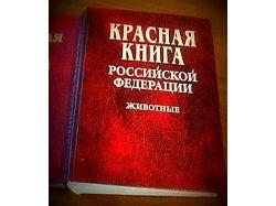 Растения россии красная книга 7