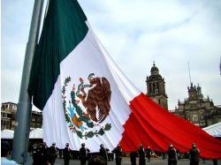 Красный белый зеленый флаг