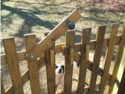 Забор из поддонов фото
