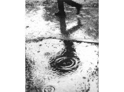 Дождь любви картинки