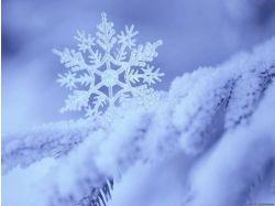 Красивые картинки зима новый год