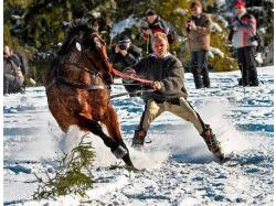 Фотографии зимние виды спорта