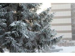 Фотографии новосибирска зимой