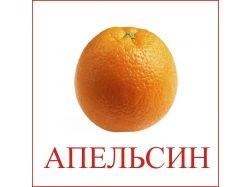 Апельсин картинки для детей