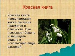 Красная книга растения фото
