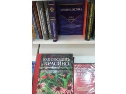 Картинки книжных магазинов