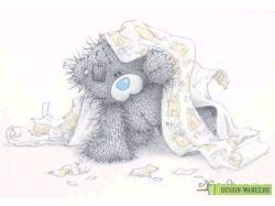 Картинки на рабочий стол мишки тедди