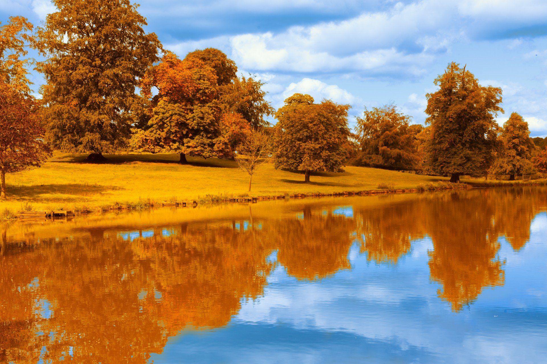 картинки золотая осень в высоком разрешении прозвище
