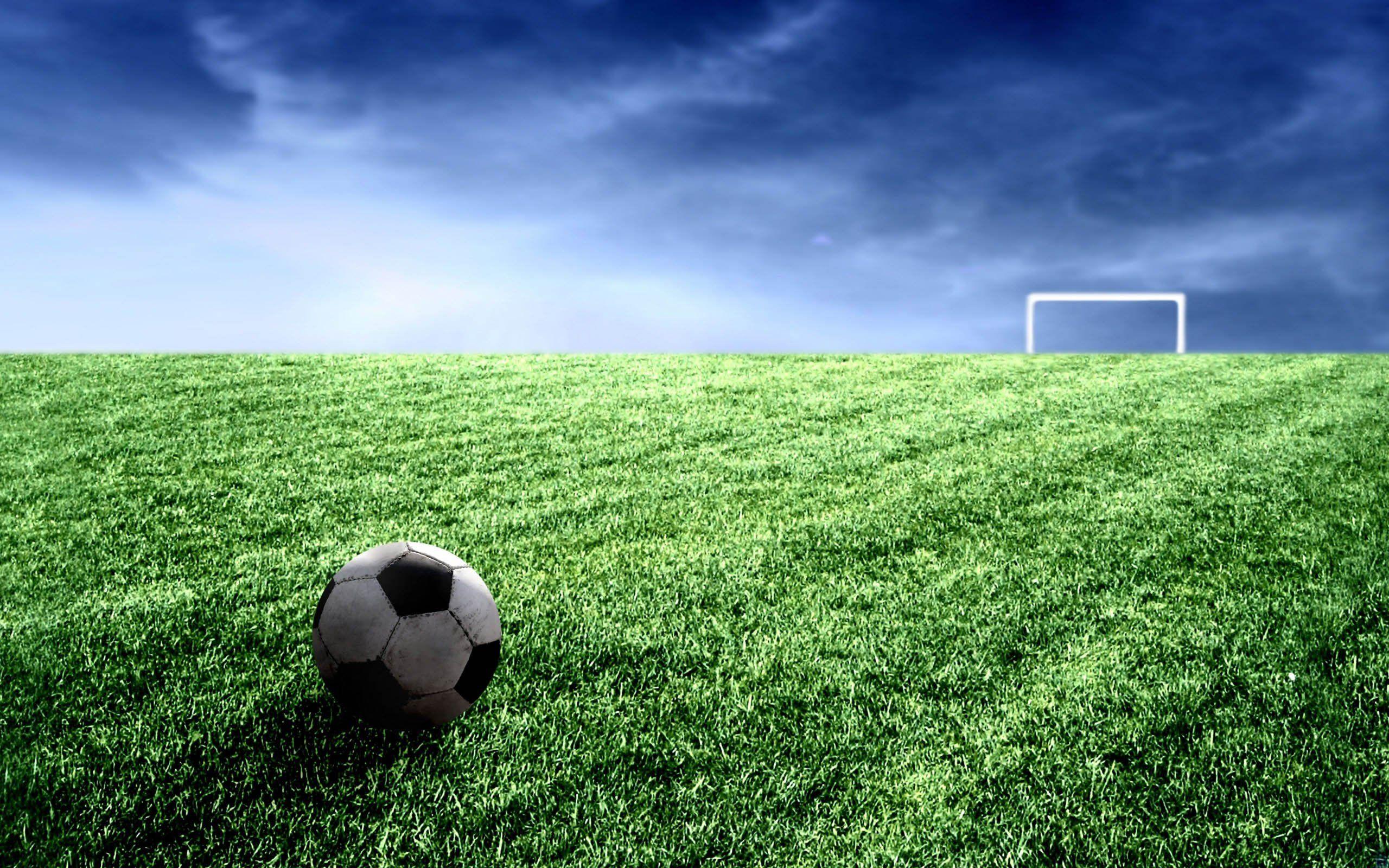 Soccer Field Grass Wallpaper images  Hdimagelib