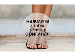 Скачать бесплатно картинки туфли
