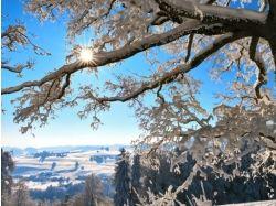 Швейцария зима фото
