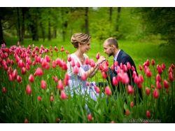 Свадьба в мае фото
