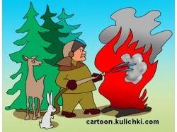 Картинки пожар в лесу