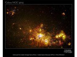 Фото с телескопов любителей